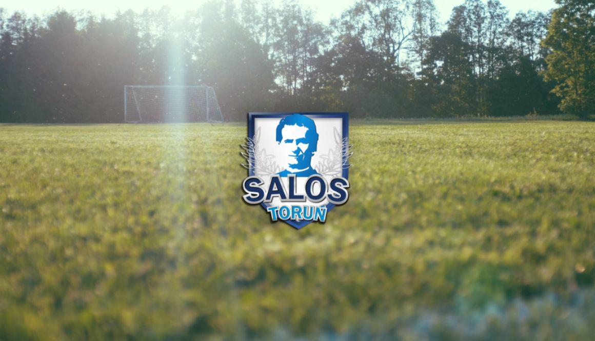 tapeta_salos_4